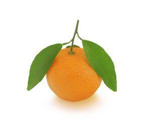 Naranja Navelina valencia